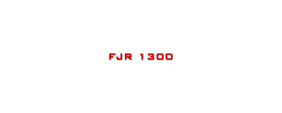FJR 1300